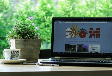 Pierwszy rok mojego bloga
