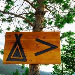 Jak przetrwać pod namiotem